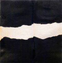 kunst-minimalisme-wandobject met koeienhuid-Henk Peeters-1.jpg