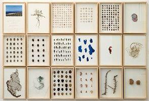 kunst-minimalisme-schilderij-Herman de Vries-3.jpg