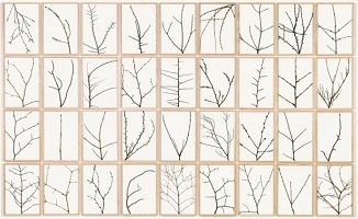 kunst-minimalisme-schilderij-Herman de Vries-8.jpg