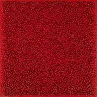 kunst-minimalisme-rood schilderij-bernard aubertin-3.jpg