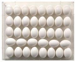 kunst-minimalisme-wit schilderij-leo erb-6.jpg