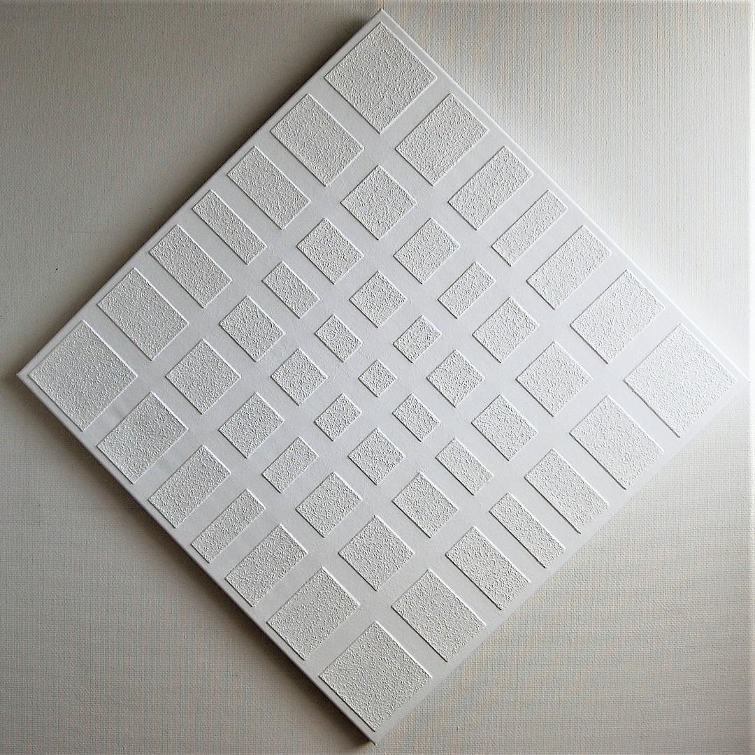103b-kunst-minimalisme-schilderij-wit-100x100cm-1250euro-henkbroeke.jpg